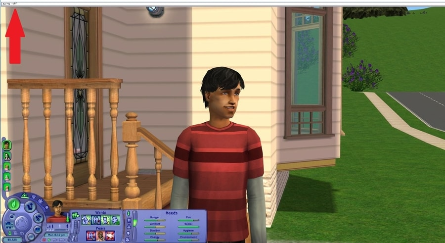 Sims 2 Aging Off Cheat
