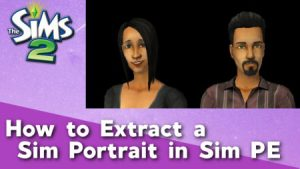 How to Extract a Portrait in Sim PE