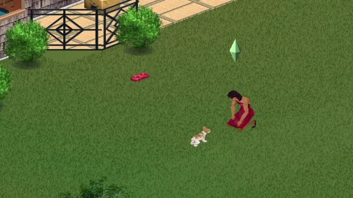 Adopt Strays Sims 1