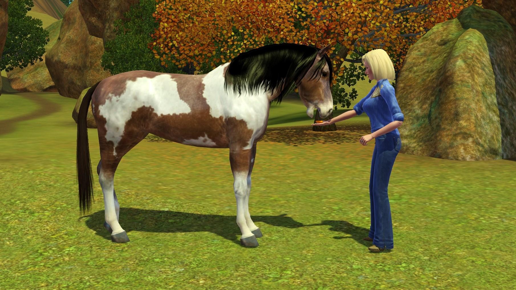 Sims 3 Wild Horse Feeding Treat